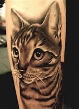 Imagens de tatuagens de gato